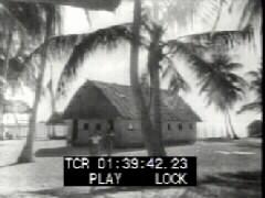 Thumbnail of Fijian Life